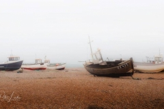 Images of Dungeness